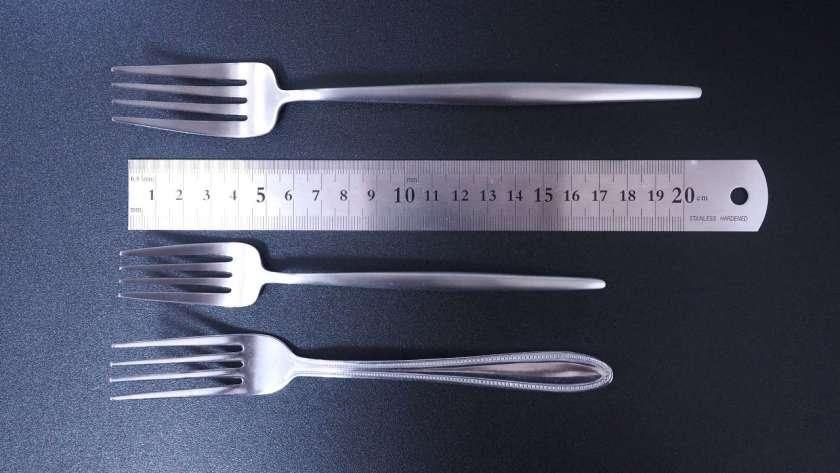 クチポールの長さ比較。