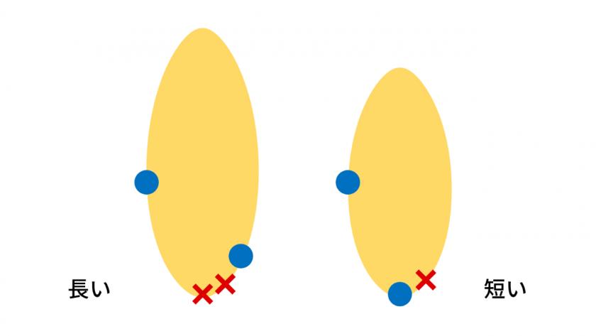 スキムボードの掴む位置を示した図。